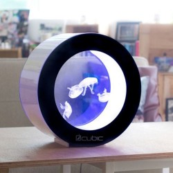 Cubic Orbit 20 acuario para medusas vivas