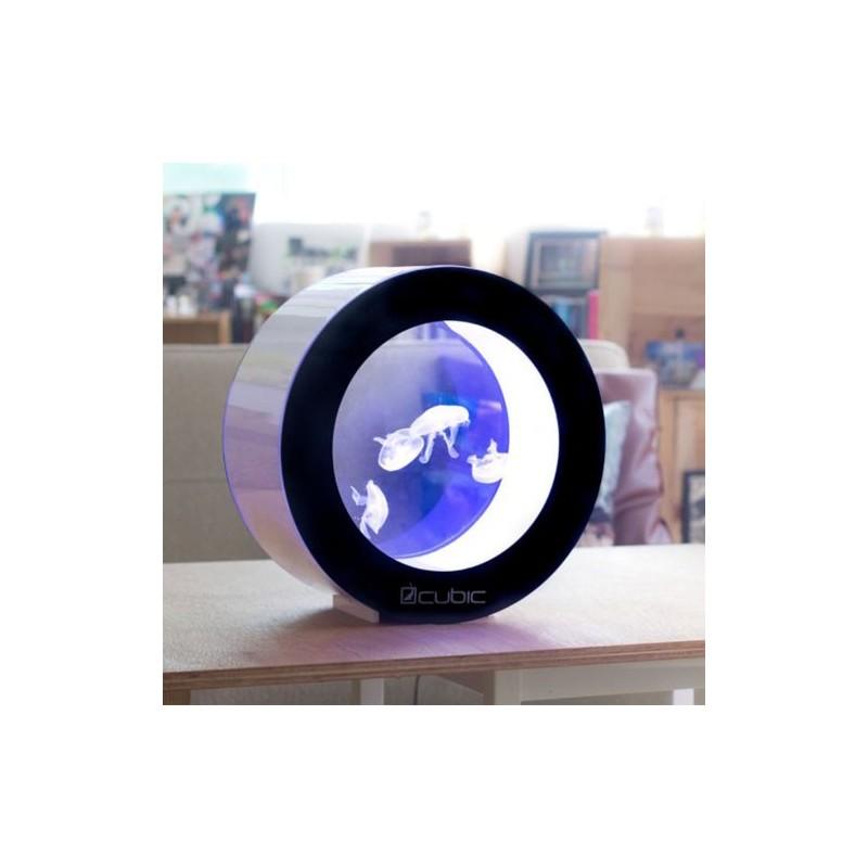 Comprar acuario para medusas vivas orbit 20