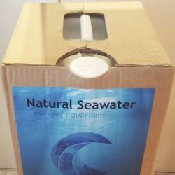 Garrafa de agua de mar de 20 litros en venta