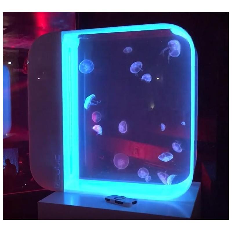 Cubic Pulse 80 acuario para medusas 80 litros blanco en venta