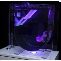 MEDUSA. Medusario transparente para colocar sobre mueble. Con tubos e iluminación. Sin filtración.