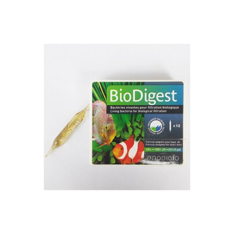 Biodigest prodibio bacterias vivas para filtración biológica en acuario de medusas y marino (12 viales)